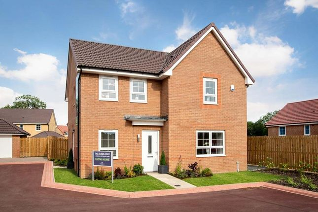"4 bedroom detached house for sale in ""Radleigh"" at Green Lane, Yarm"