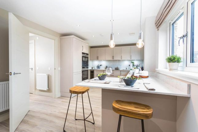 "Thumbnail Detached house for sale in ""Leonardo Garden Room"" at Low Coniscliffe, Darlington"
