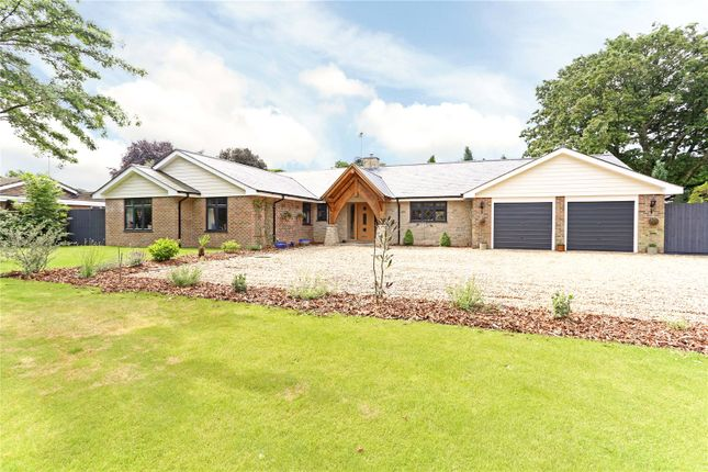 Thumbnail Detached bungalow for sale in Hedgehog Lane, Haslemere, Surrey