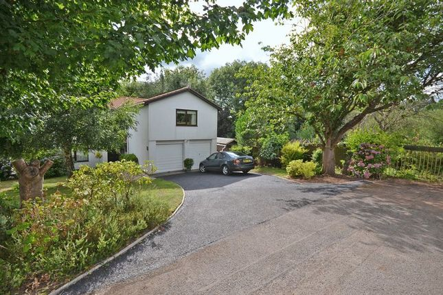 Thumbnail Detached house for sale in Outstanding Family House, Wood Close, Rogerstone