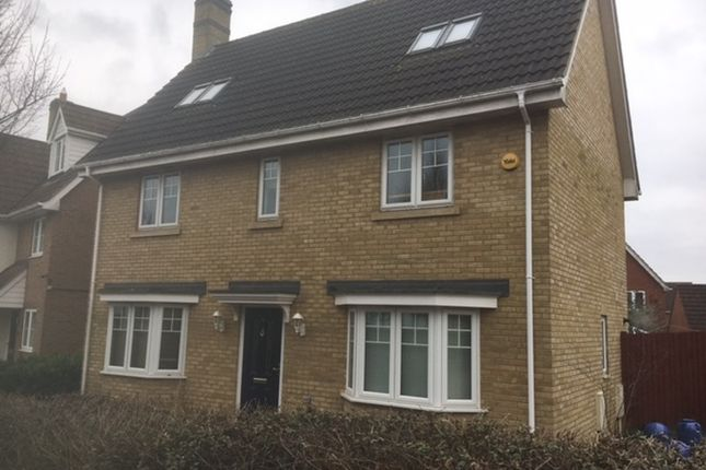 Thumbnail Detached house for sale in Chestnut View, Great Dunmow, Essex