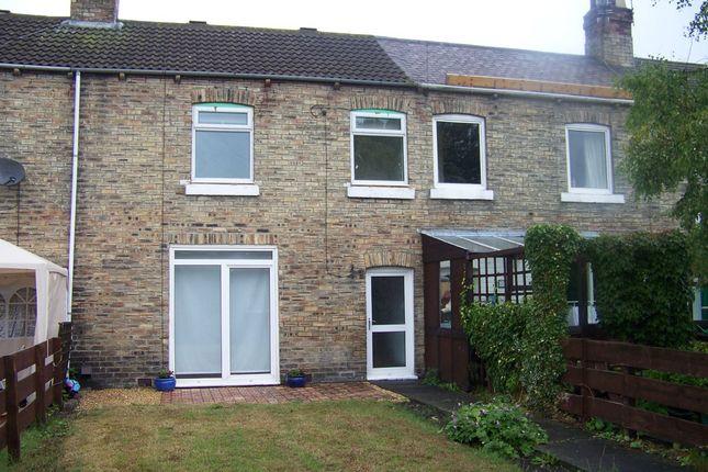 Thumbnail Terraced house to rent in Ninth Row, Ashington