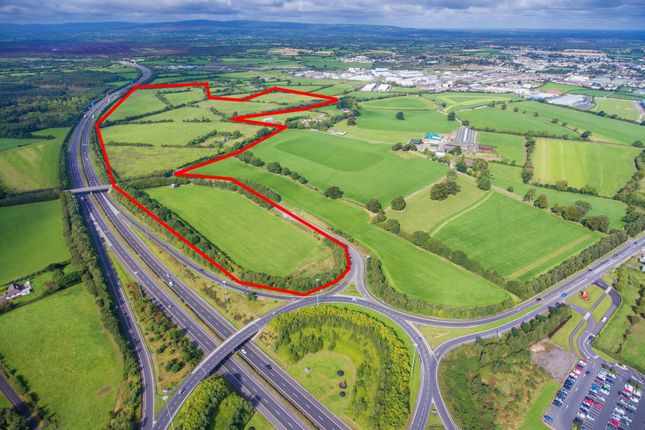 Thumbnail Land for sale in Portlaoise, Co. Laois, Laois County, Leinster, Ireland