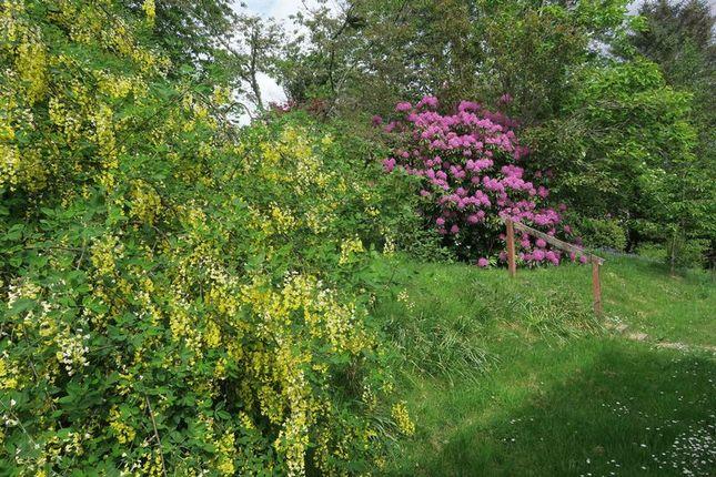 Photo 13 of Ardvasar, Isle Of Skye IV45