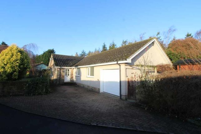 Thumbnail Detached bungalow for sale in Warenford, Belford, Northumberland
