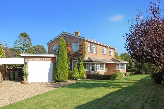Thumbnail Detached house for sale in Belcaire Close, Lympne, Kent