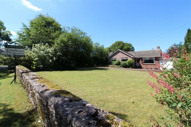 Thumbnail Detached bungalow for sale in Beacon View, Ellonby, Penrith, Cumbria