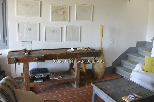 Villa With Garden And Olive Grove For Sale In Montespertoli