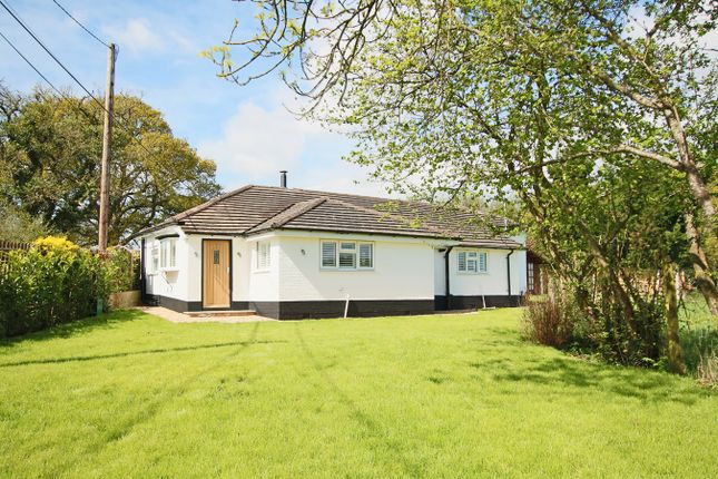 Thumbnail Detached bungalow for sale in Crow Hill, Crow, Ringwood