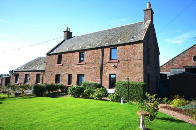 Thumbnail Semi-detached house to rent in Meigle, Blairgowrie
