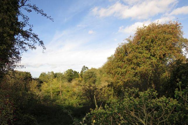Thumbnail Land for sale in Norton Hill, Snettisham, King's Lynn, Norfolk