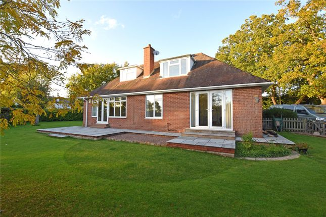 Thumbnail Bungalow to rent in Exton, Exeter