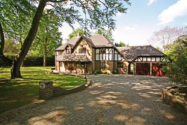 Thumbnail Detached house to rent in Godolphin Road, Weybridge