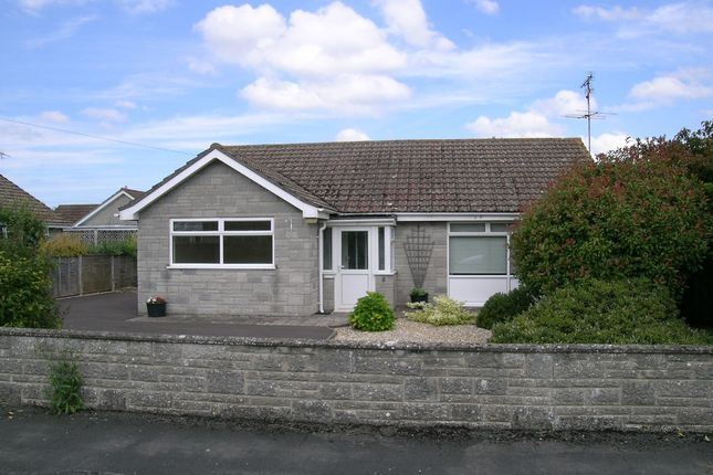 Thumbnail Detached bungalow to rent in Pinewood Drive, Yeovil