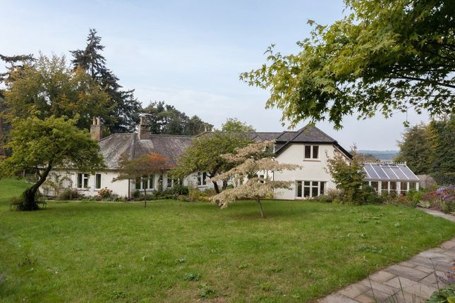 Thumbnail Detached house for sale in The Croft, Costessey, Norwich