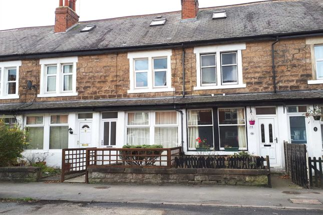 Thumbnail Terraced house to rent in Hookstone Avenue, Harrogate