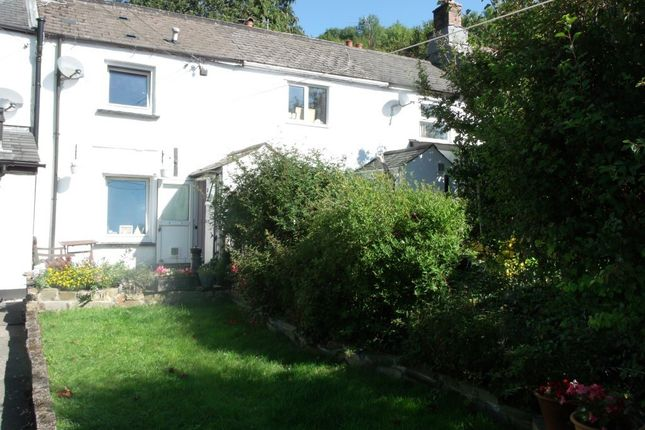 Thumbnail 2 bed terraced house to rent in The Green, Horrabridge, Yelverton