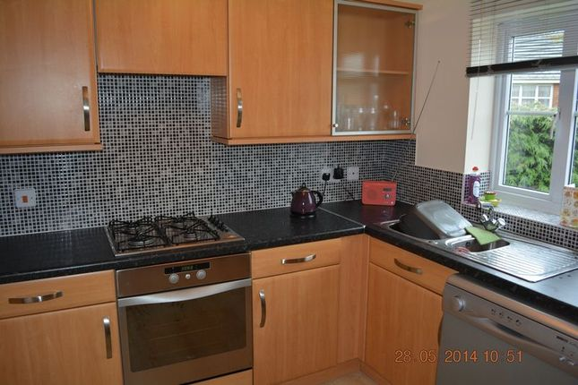 Thumbnail End terrace house to rent in Rockingham Close, Lincoln
