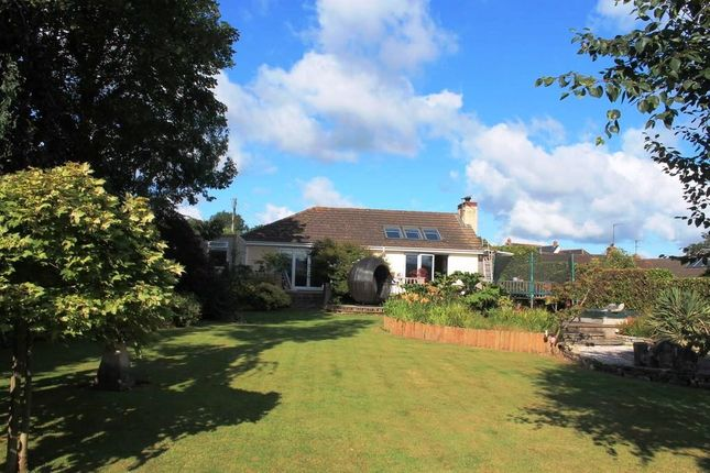 Detached bungalow for sale in Cadhay Lane, Ottery St. Mary