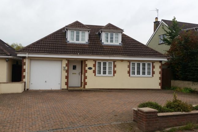 Thumbnail Detached bungalow to rent in North End, Creech St Michael