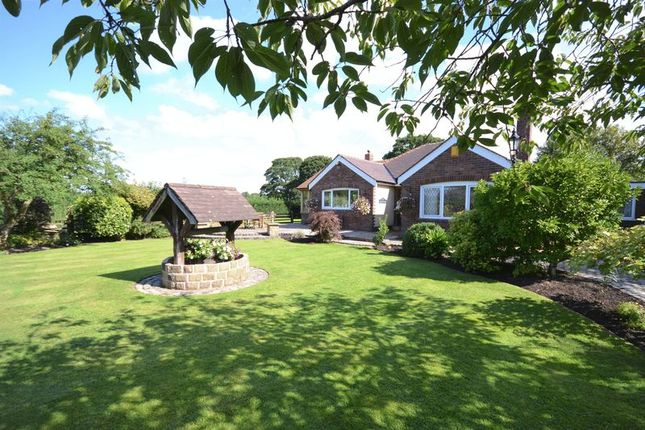 Thumbnail Detached bungalow for sale in Robin Hill, Back Lane, Charnock Richard