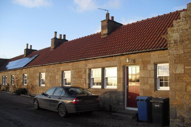 Thumbnail Terraced house to rent in Ladybank, Cupar