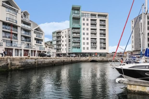 Thumbnail Flat to rent in Harbour Avenue, Plymouth