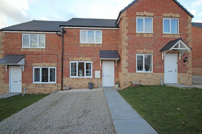 Thumbnail Terraced house for sale in Gibson Close, Haltwhistle