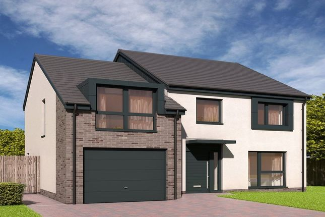 Thumbnail Detached house for sale in Devongrange, Sauchie, Alloa