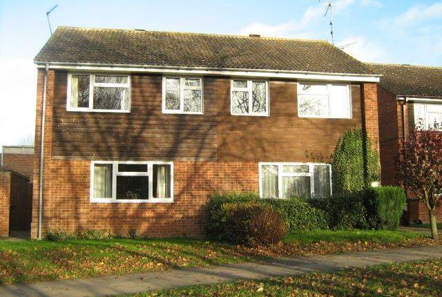 3 bed property to rent in Wittmills Oak, Buckingham
