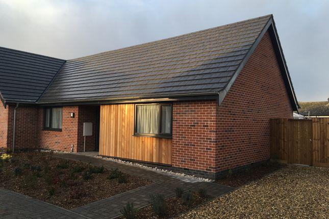 Thumbnail Semi-detached bungalow for sale in Walnut Tree Road, Mattishall, Norfolk