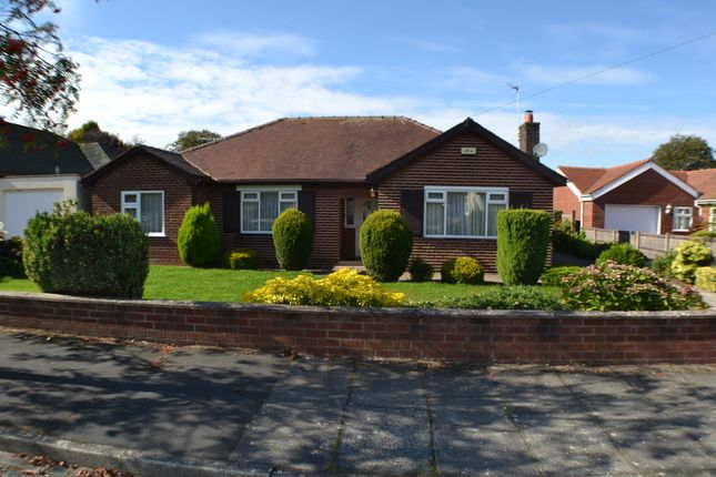 Thumbnail Detached bungalow to rent in Beech Avenue, Leyland