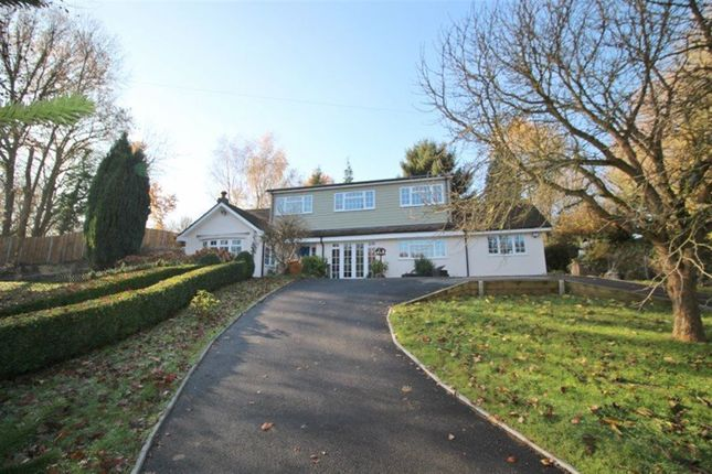 Thumbnail Detached house to rent in The Willows, Borough Green Road, Ightham, Sevenoaks