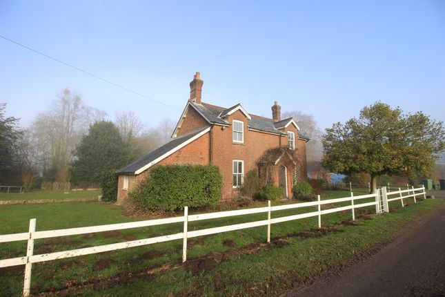 Thumbnail Detached house to rent in Sparsholt, Winchester