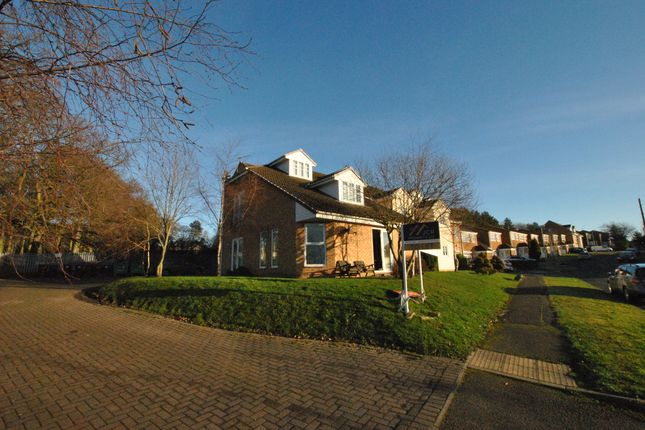 Thumbnail Flat to rent in Middlewood House, Ushaw Moor