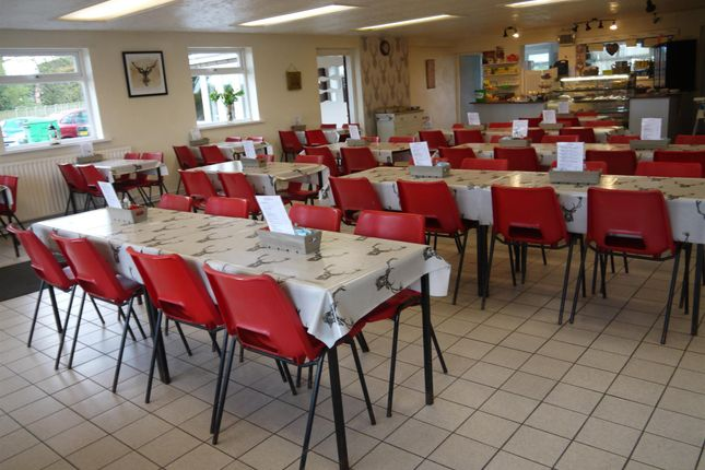 Thumbnail Restaurant/cafe for sale in Cafe & Sandwich Bars YO43, Holme-On-Spalding-Moor, East Yorkshire