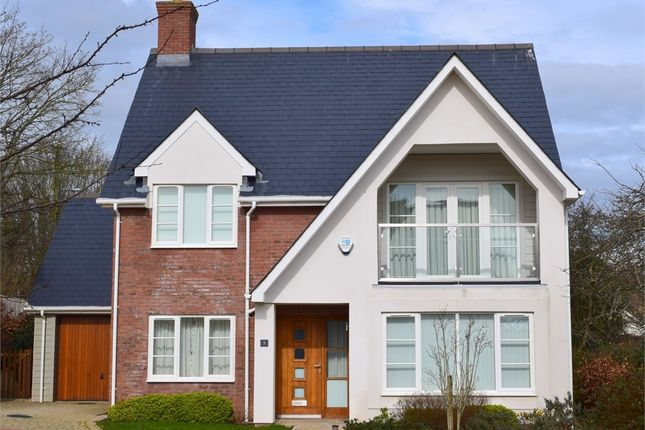 Thumbnail Detached house for sale in East Budleigh Road, Budleigh Salterton