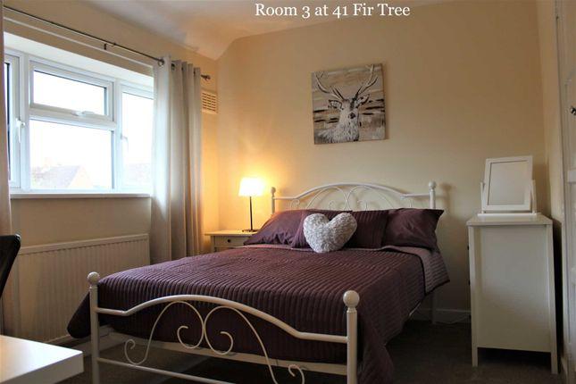 Room to rent in Room 3, 41 Fir Tree Road, Bellfields
