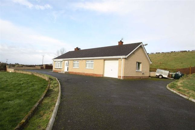 Thumbnail Detached bungalow for sale in Lisburn Road, Ballynahinch, Down.