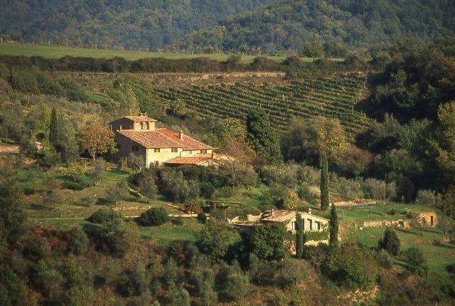 Picture No.08 of Classical Estate, Chianti, Tuscany