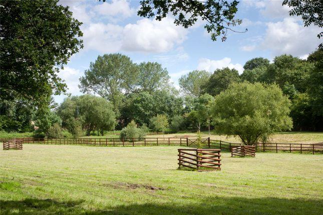 Paddocks of Parkwater Lane, Whiteparish, Salisbury SP5