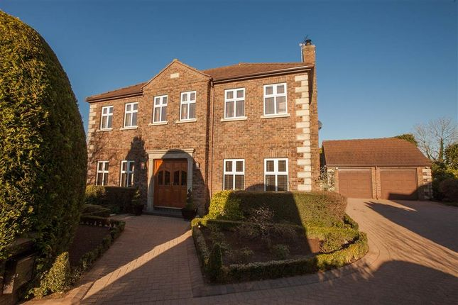 Thumbnail Detached house for sale in 1, Old Mill, Templepatrick