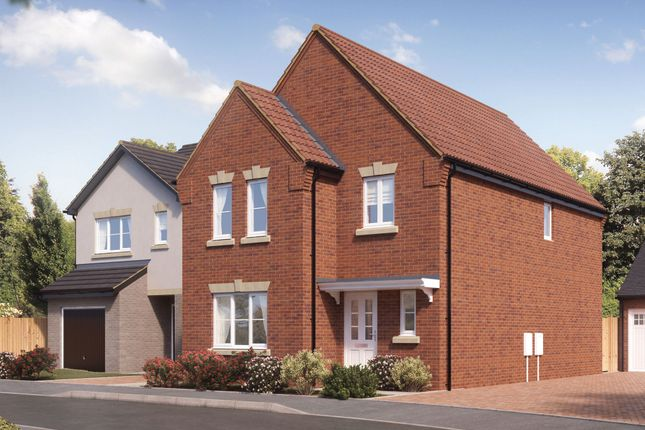 Thumbnail Detached house for sale in Silk Mill Road, Norwich