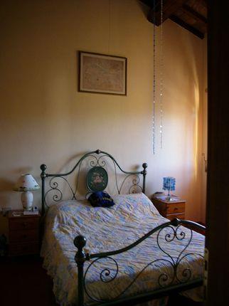 Image of Umbria, Perugia, Città di Castello, Perugia, Umbria, Italy