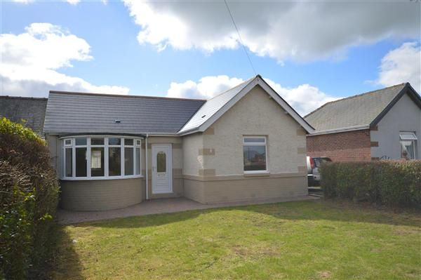 Thumbnail Bungalow to rent in Hillcrest, Burnhope, Durham