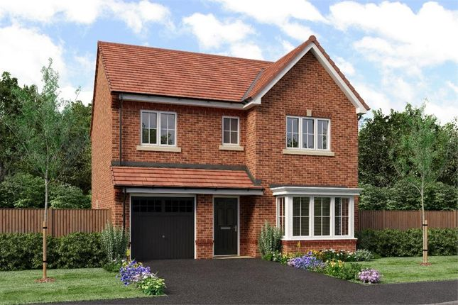 "Thumbnail Detached house for sale in ""The Glenmuir"" at Weldon Road, Cramlington"