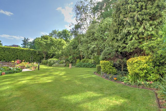 Rear Garden 3 of London Road, Patcham, Brighton BN1