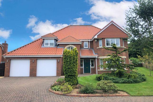 Thumbnail Detached house for sale in Monkton Rise, Guisborough