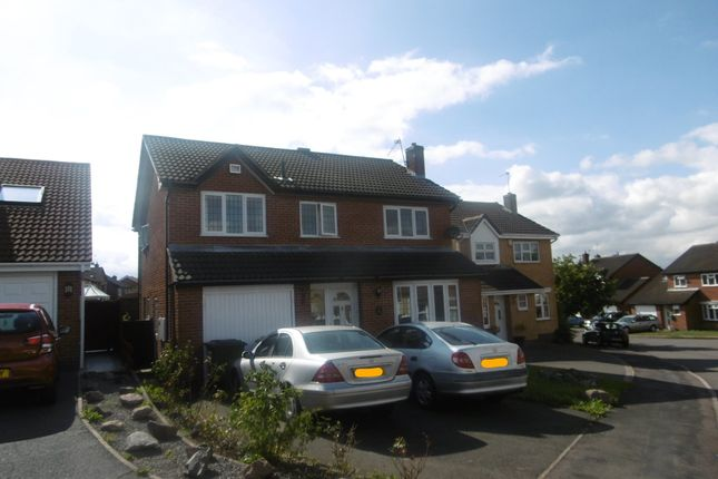 Thumbnail Property to rent in Winterfield Close, Glenfield, Leicester