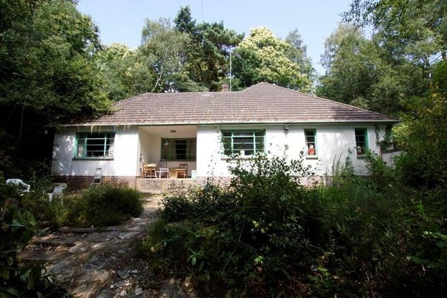 Thumbnail Bungalow for sale in Wilderton Road, Branksome Park, Poole